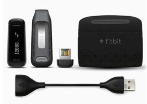 What's Included Fitbit One